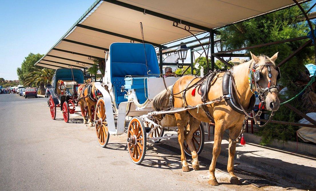 Horse carriage ride in Aegina island - Greece