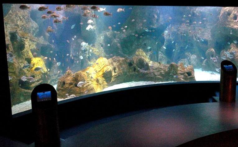 Aquarium in Crete island - Greece
